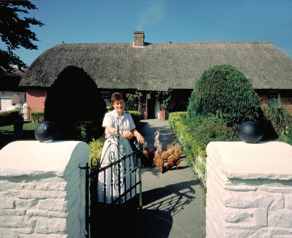 Bunratty-ireland-chickens